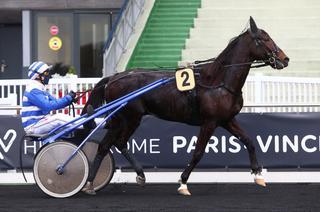 Quinté+ de mercredi 14/04 à Lyon-la-Soie GNT (R1C1 - 13h50) : un succès pour le méritant Elvis du Vallon ?