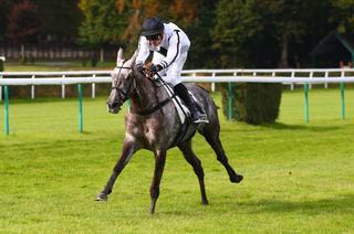 Quatre sur quatre pour François Nicolle à Compiègne... et une inversion de chevaux !