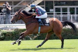 Grand Steeple Chase de Lyon : Derby de Tendron bis repetita ?