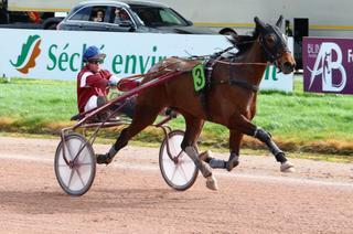 Mardi au Mans : 4 sur 4 pour Hestia d'Héripré, 6 sur 6 pour Galius
