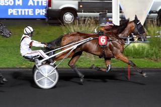 Vendredi à Chartres : six victoires à la suite pour Hokio